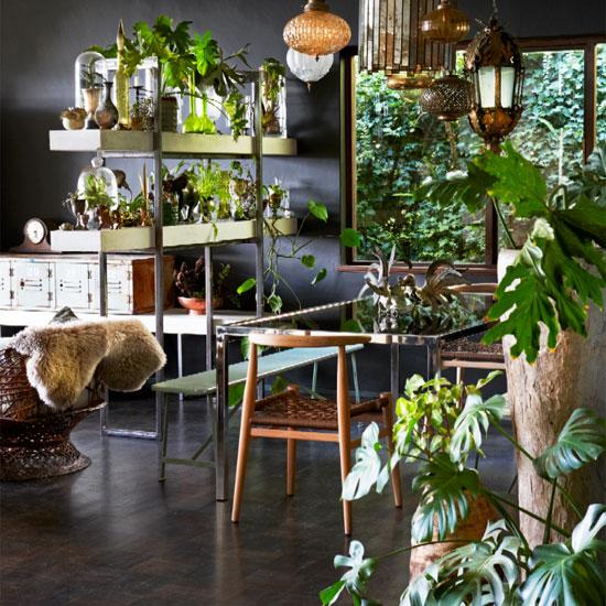 Стильная ботаника: освежаем интерьер с помощью комнатных растений